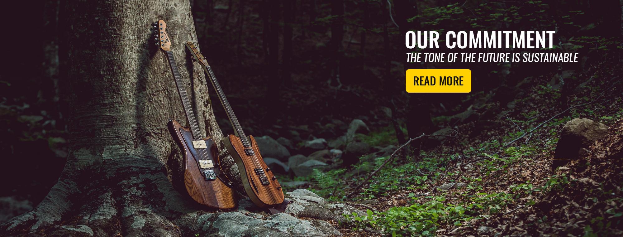 Eco-Friendly Guitars